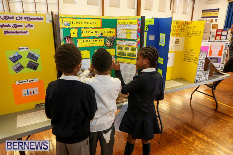 Elliott-Primary-Science-Fair-Bermuda-February-25-2015-28