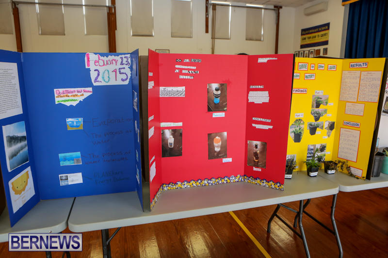Elliott-Primary-Science-Fair-Bermuda-February-25-2015-31