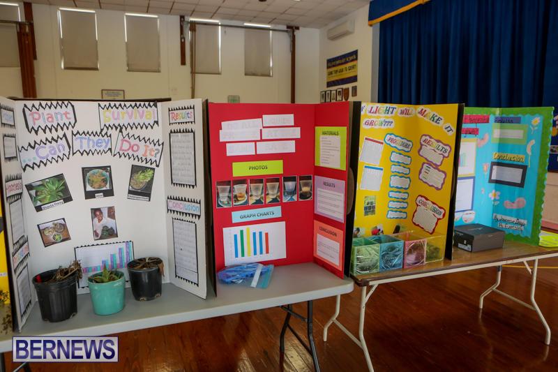 Elliott-Primary-Science-Fair-Bermuda-February-25-2015-32