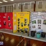 Elliott Primary Science Fair Bermuda, February 25 2015-33