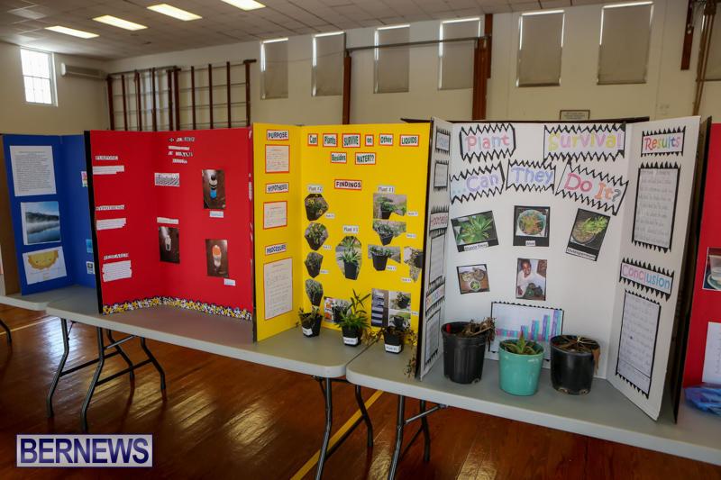 Elliott-Primary-Science-Fair-Bermuda-February-25-2015-33