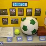 Elliott Primary Science Fair Bermuda, February 25 2015-35