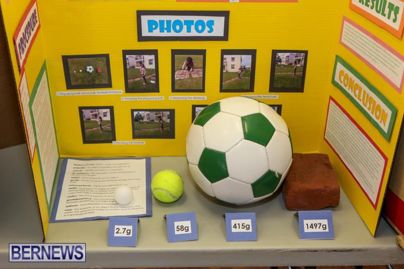 Elliott-Primary-Science-Fair-Bermuda-February-25-2015-35