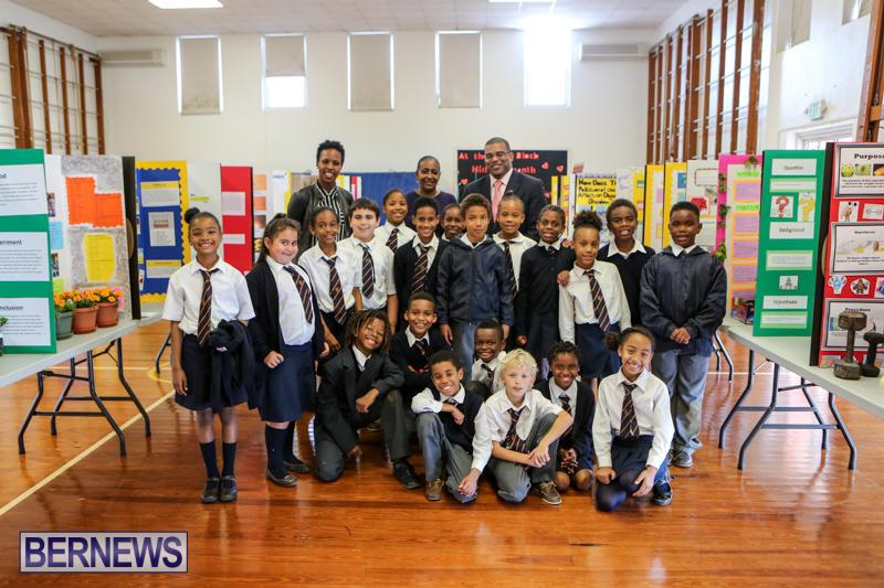 Elliott-Primary-Science-Fair-Bermuda-February-25-2015-4