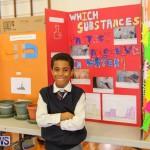 Elliott Primary Science Fair Bermuda, February 25 2015-5