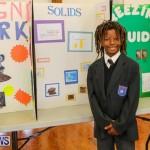 Elliott Primary Science Fair Bermuda, February 25 2015-6