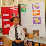 Elliott Primary Science Fair Bermuda, February 25 2015-7