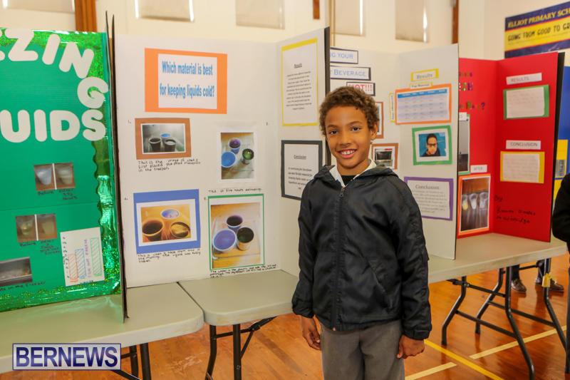 Elliott-Primary-Science-Fair-Bermuda-February-25-2015-9