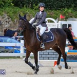 FEI World Jumping Challenge Bermuda, February 22 2015-1