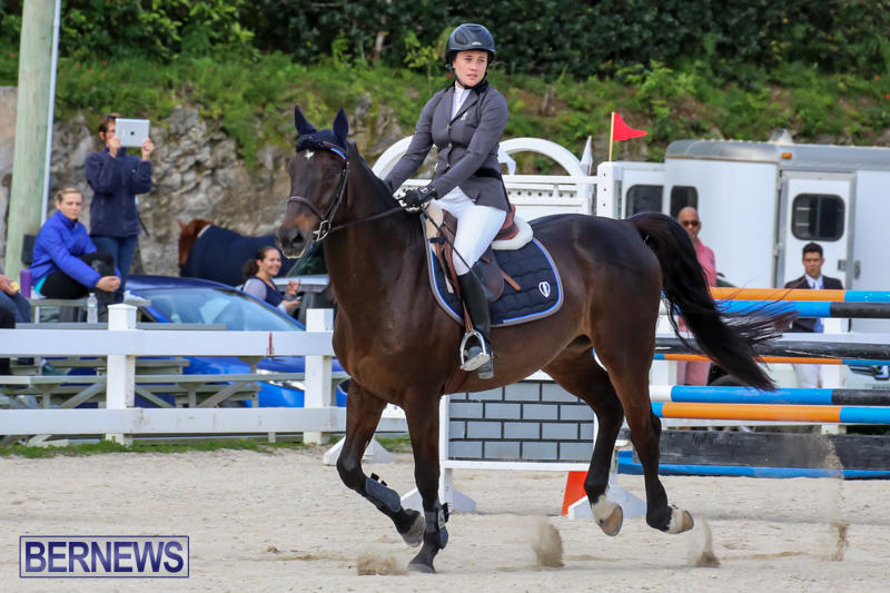 FEI-World-Jumping-Challenge-Bermuda-February-22-2015-1