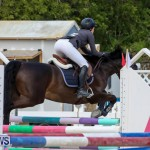 FEI World Jumping Challenge Bermuda, February 22 2015-10