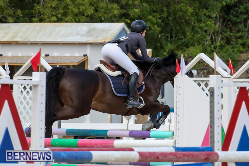 FEI-World-Jumping-Challenge-Bermuda-February-22-2015-10