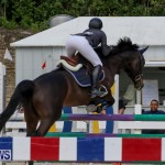 FEI World Jumping Challenge Bermuda, February 22 2015-11