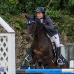 FEI World Jumping Challenge Bermuda, February 22 2015-12
