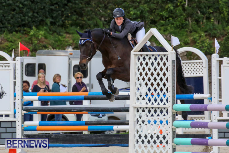 FEI-World-Jumping-Challenge-Bermuda-February-22-2015-13