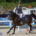 FEI World Jumping Challenge Bermuda, February 22 2015-14