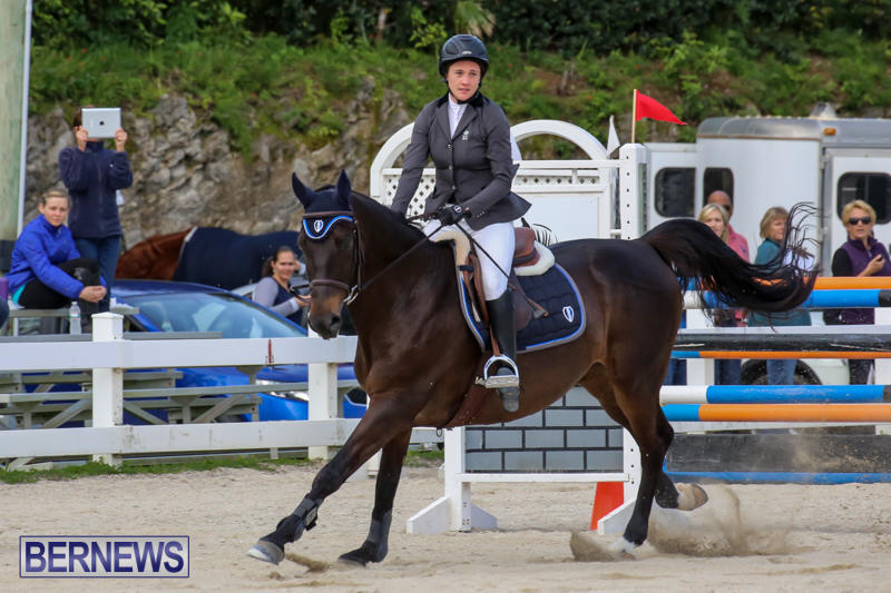 FEI-World-Jumping-Challenge-Bermuda-February-22-2015-14