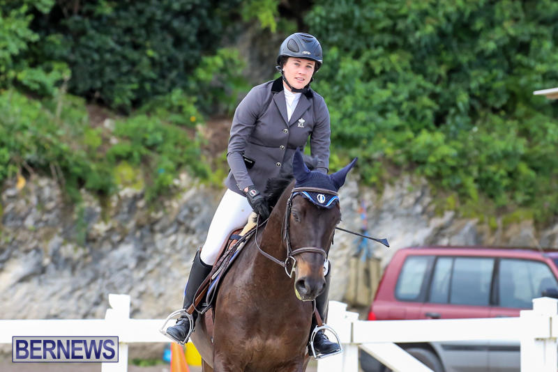 FEI-World-Jumping-Challenge-Bermuda-February-22-2015-15
