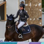 FEI World Jumping Challenge Bermuda, February 22 2015-16