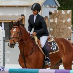 FEI World Jumping Challenge Bermuda, February 22 2015-17