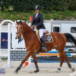 FEI World Jumping Challenge Bermuda, February 22 2015-18