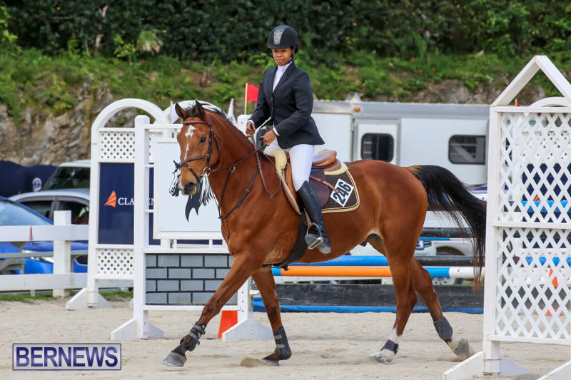FEI-World-Jumping-Challenge-Bermuda-February-22-2015-18