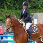 FEI World Jumping Challenge Bermuda, February 22 2015-19