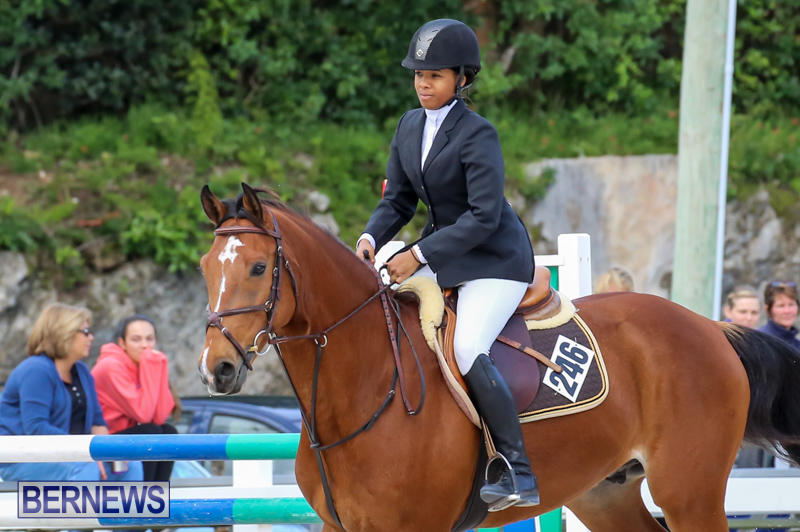 FEI-World-Jumping-Challenge-Bermuda-February-22-2015-19