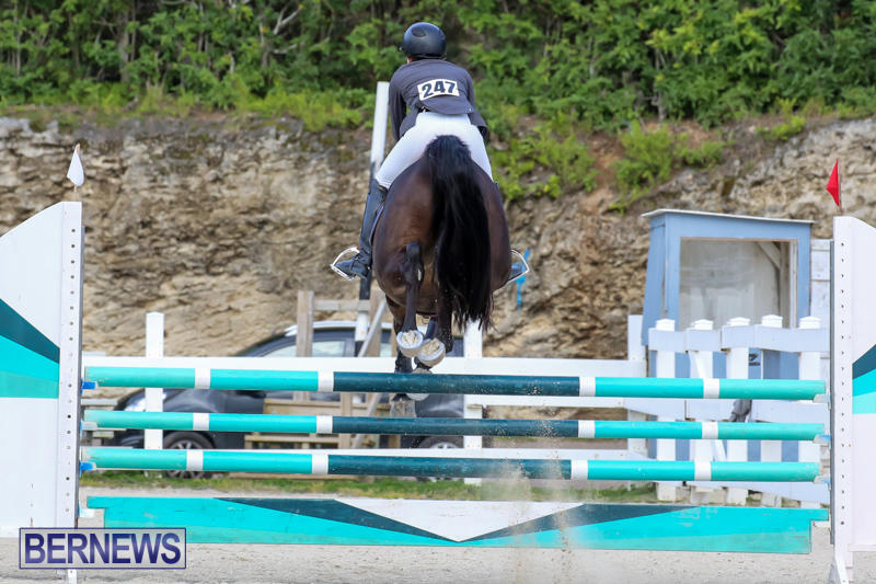 FEI-World-Jumping-Challenge-Bermuda-February-22-2015-2