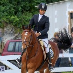FEI World Jumping Challenge Bermuda, February 22 2015-20