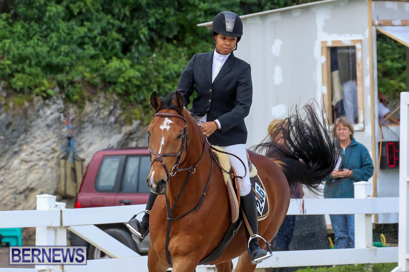 FEI-World-Jumping-Challenge-Bermuda-February-22-2015-20