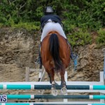 FEI World Jumping Challenge Bermuda, February 22 2015-21