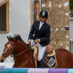 FEI World Jumping Challenge Bermuda, February 22 2015-22