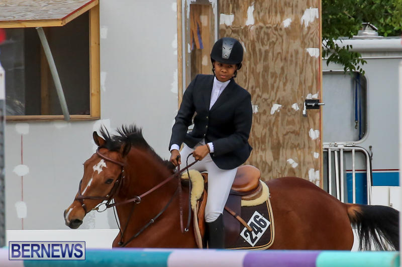 FEI-World-Jumping-Challenge-Bermuda-February-22-2015-22
