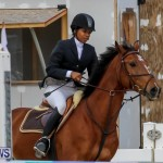 FEI World Jumping Challenge Bermuda, February 22 2015-23