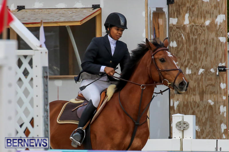 FEI-World-Jumping-Challenge-Bermuda-February-22-2015-23