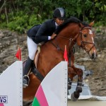 FEI World Jumping Challenge Bermuda, February 22 2015-24