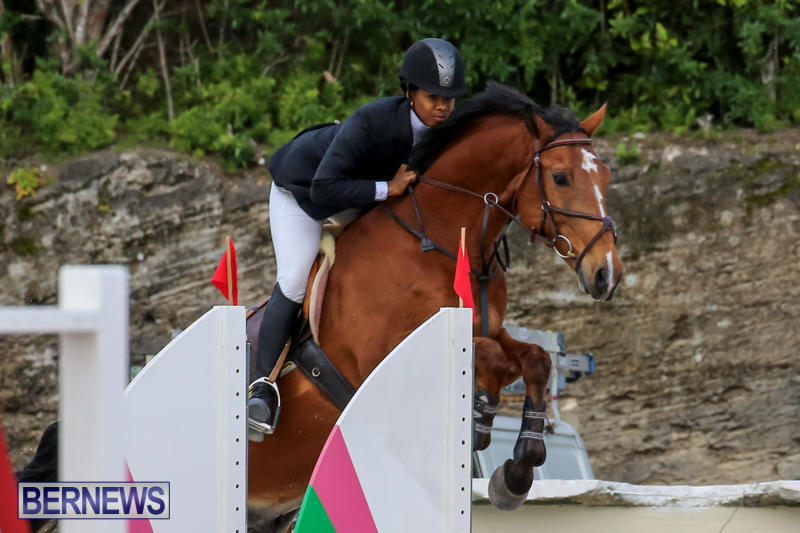 FEI-World-Jumping-Challenge-Bermuda-February-22-2015-24