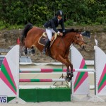 FEI World Jumping Challenge Bermuda, February 22 2015-26