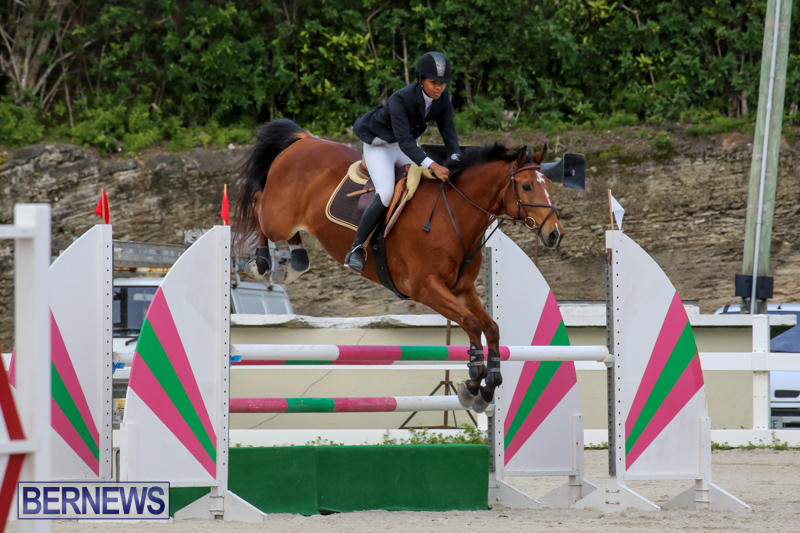 FEI-World-Jumping-Challenge-Bermuda-February-22-2015-26