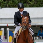 FEI World Jumping Challenge Bermuda, February 22 2015-27