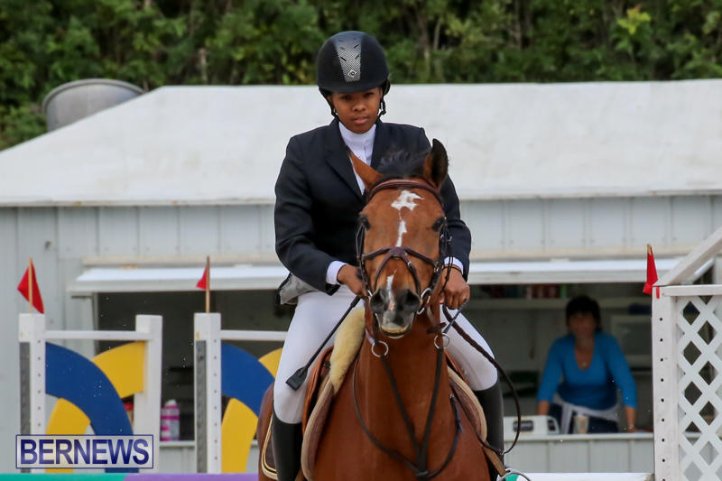 FEI-World-Jumping-Challenge-Bermuda-February-22-2015-27