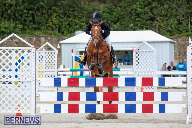 FEI-World-Jumping-Challenge-Bermuda-February-22-2015-28