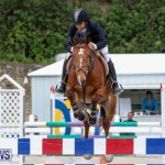 FEI World Jumping Challenge Bermuda, February 22 2015-29