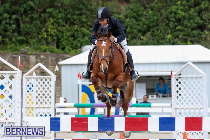 FEI-World-Jumping-Challenge-Bermuda-February-22-2015-29