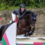 FEI World Jumping Challenge Bermuda, February 22 2015-3