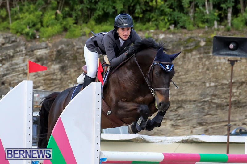FEI-World-Jumping-Challenge-Bermuda-February-22-2015-3