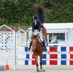FEI World Jumping Challenge Bermuda, February 22 2015-30
