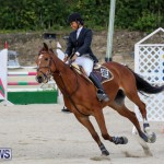 FEI World Jumping Challenge Bermuda, February 22 2015-31