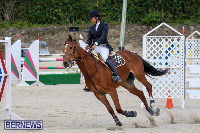 FEI-World-Jumping-Challenge-Bermuda-February-22-2015-31
